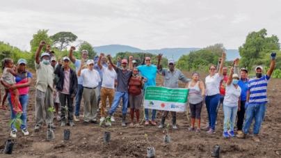 Fundación Popular y FUNDASEP siembran 20,000 árboles en San Juan de la Maguana.