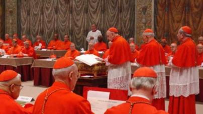 A propósito de vicisitudes cardenalicias.