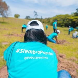Grupo Popular siembra 1,500 árboles en el Plan Sierra.